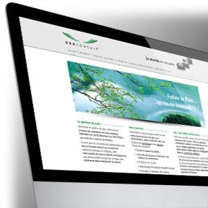 Site Internet GRH-Consult