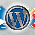 wordpress_numero_un