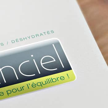Logotype Elanciel