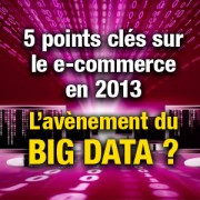 Le Big Data et le e-commerce en 2013