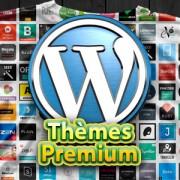 Les Thèmes Premium pour WordPress