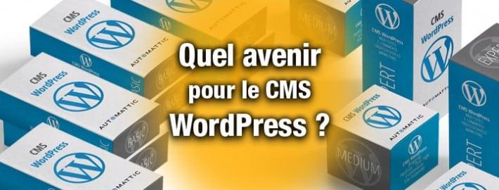 Quel avenir pour le CMS WordPress ?