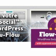 Extension WordPress Flow-Flow Social Stream