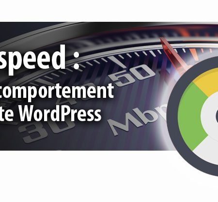 Pagespeed et Wordpress