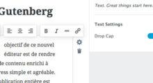 Lettrine de paragraphe de Gutenberg