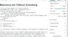 Le mode texte de Gutenberg