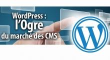 WordPress toujours leader du marché des CMS