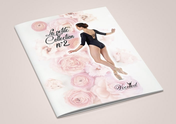 Catalogue 16 pages La petite collection N°2 -Vicard
